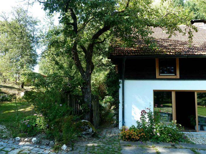 Haus-mit-Apfelbaum